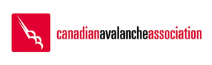 Logoavalanche Association